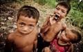 Tarantula Cemilan Anak Kamboja Di Siang Hari